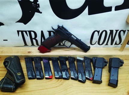 Witness 9MM with 11 Magazines, 2 Mag Carriers and Holster